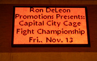 Ron DeLeon Promotion's Mixed Martial Arts Event at the Lansing Center